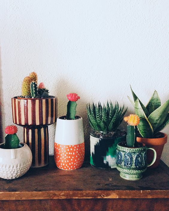 Quirky ceramics for your planties: