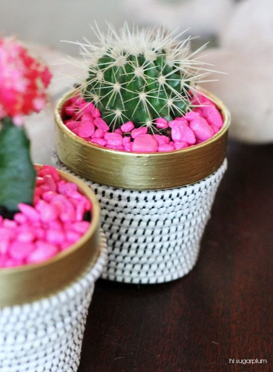 DIY Succulent Pot:
