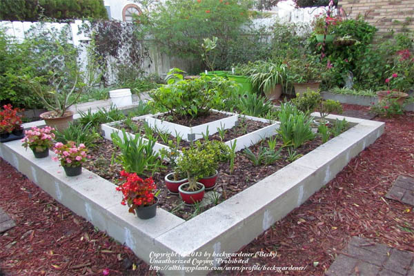 Cinder Block Garden Bed Edging