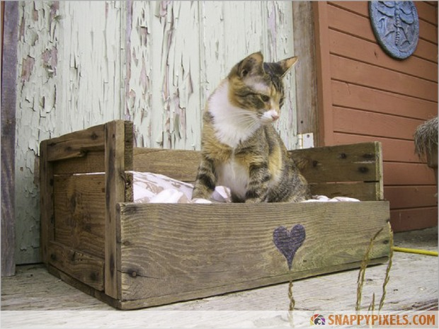 cat-bed-wood-pallet