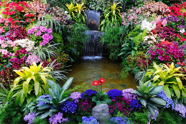 14.-flowers-with-waterfall