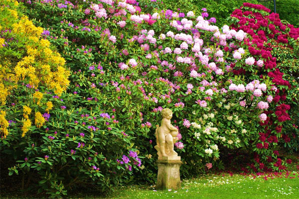 16.-flowers-with-statue