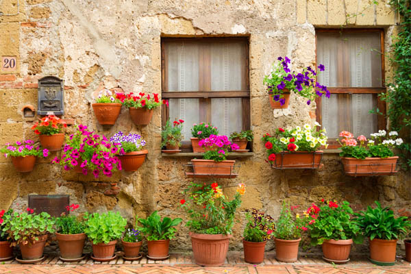 20.-potted-flowers