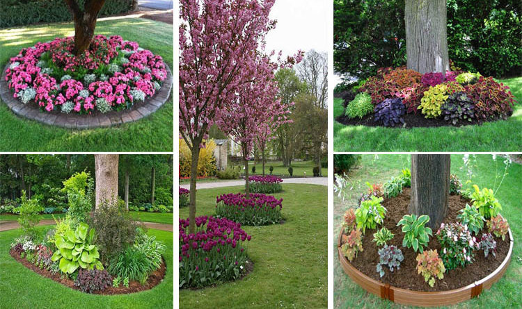 18 genius flower beds around trees you need to see