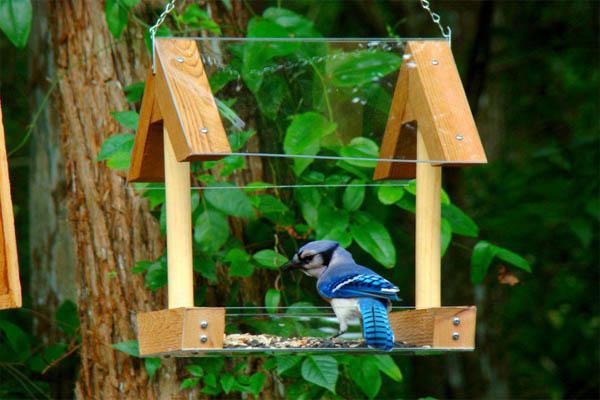 The Art In Life Bird feeders (4)