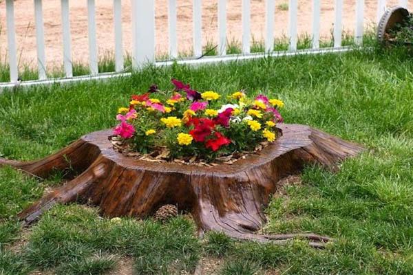 Tree-Stump-Garden-121