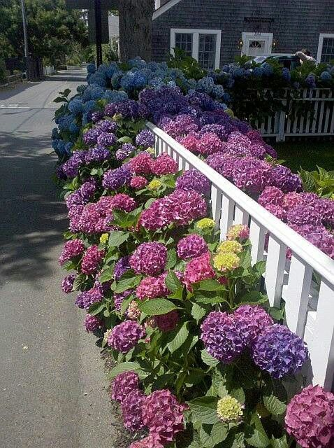 Eye Catching Lovely Garden Fences With Flowers The ART