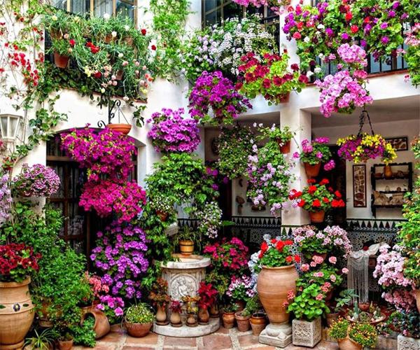 20 Creative Diy Vertical Gardens For Your Home: 15+ Creative And Amazing DIY Vertical Garden That Will