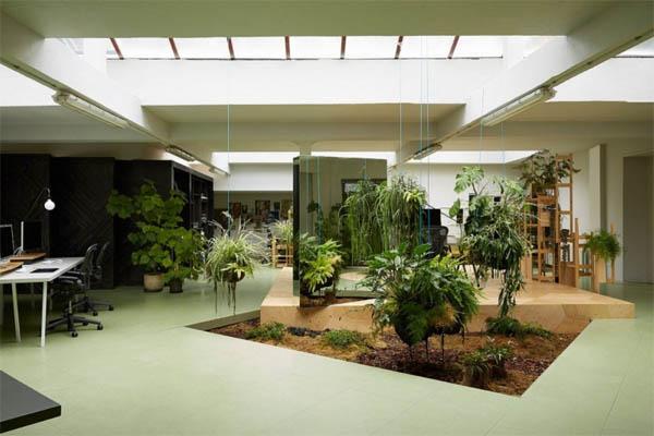 minimalist-home-garden-design