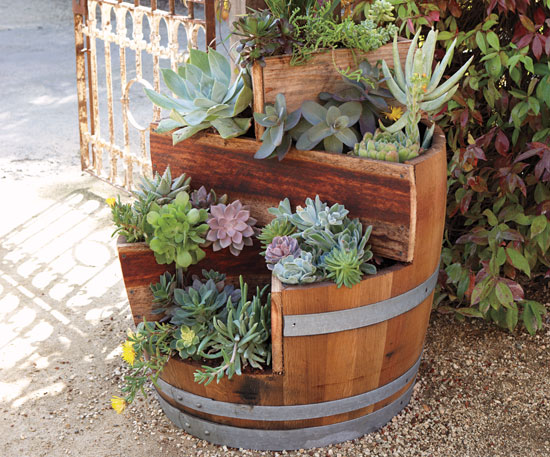 barrel planter (2)