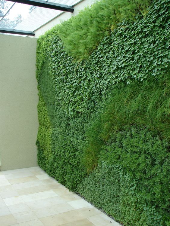 15+ Creative and Amazing DIY Vertical Garden That Will ...