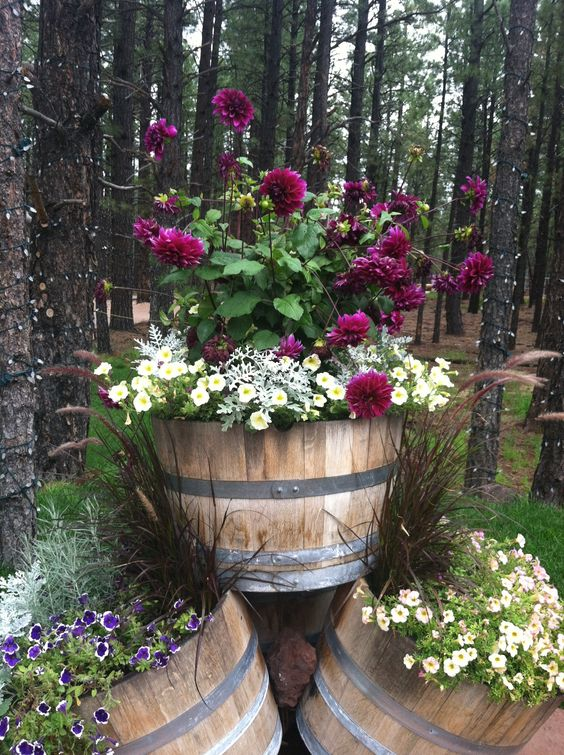 Genius Ideas How To Use Old Barrel For Planting Flowers