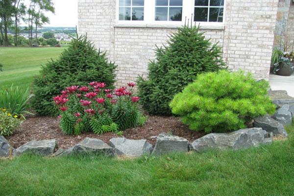 Garden Decorate Dekosteine Garden Edges Flowers