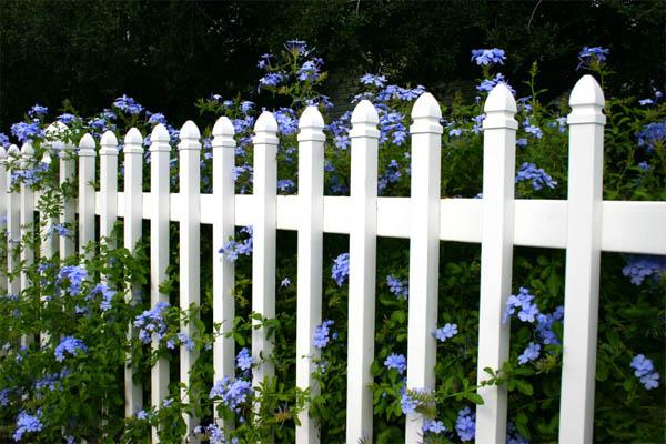 garden-fence4
