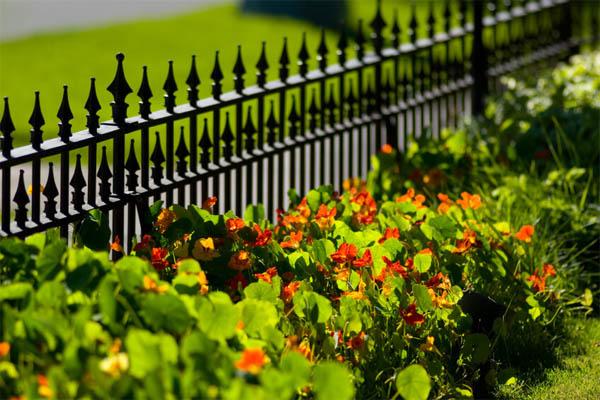 garden-fence7