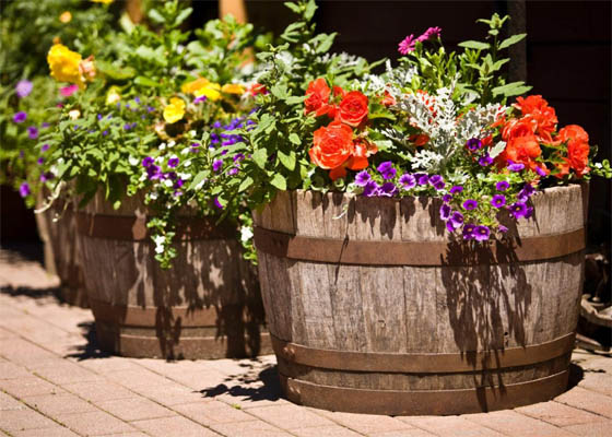 iStock-3777830_barrels-in-garden-with-flowers_s4x3.jpg.rend_.hgtvcom.1280.960-1024x768.jpeg