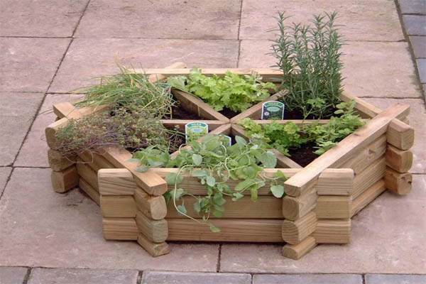 20 Amazing Ideas For Starting Your Own Herb Garden The