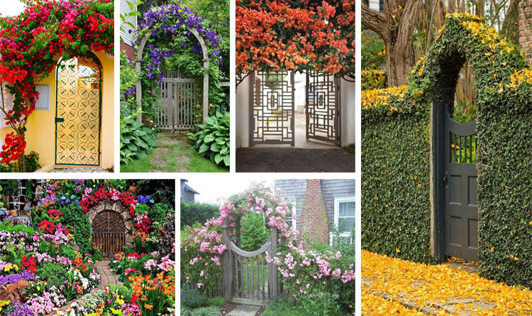 12 Fabulous Floral Garden Gates In Bold Color