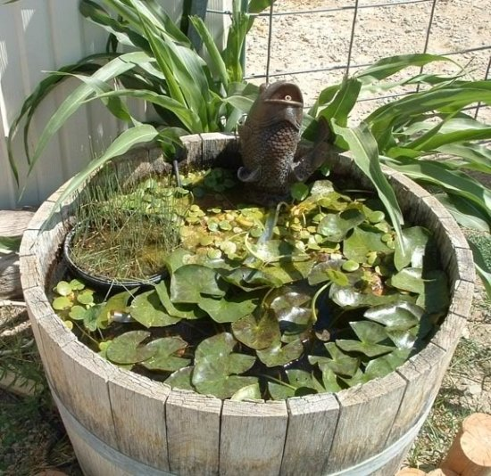 diy-pond-in-bucket-garden-water-features-carp-fountain