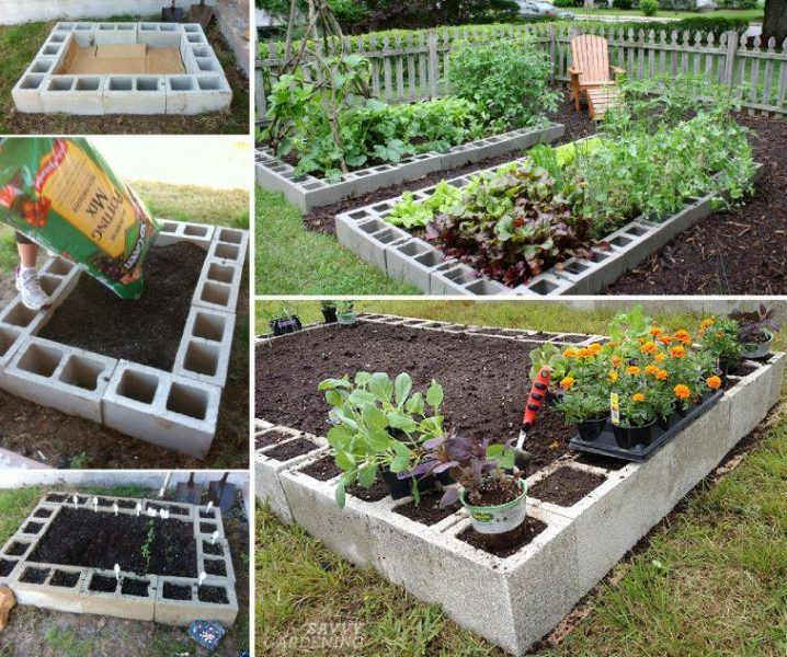 See How You Can Grow Amazing Vegetables In Raised Garden ...
