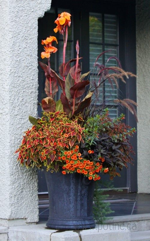20 Blow Minding Fall Container Backyard Ideas The Art In