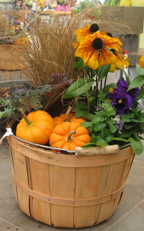 fall-container-idea-04