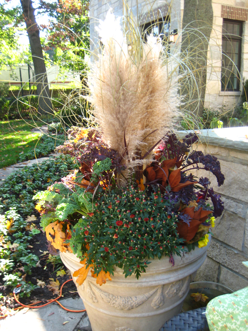 20 blow minding fall container backyard ideas the art in for Hearty ornamental grasses