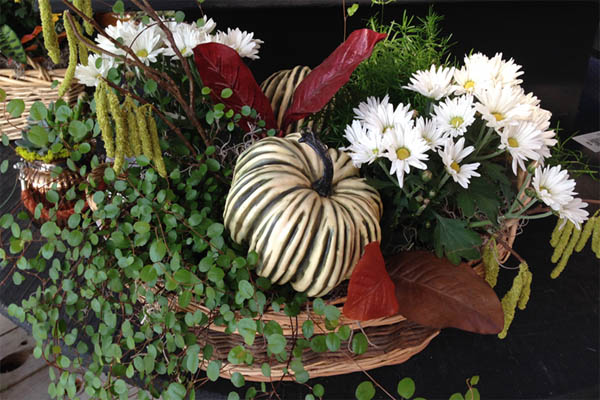 fall-container-idea-14