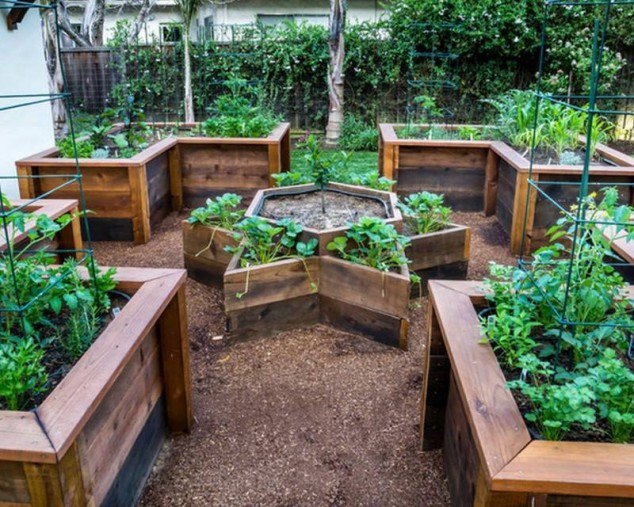 wooden-raised-garden