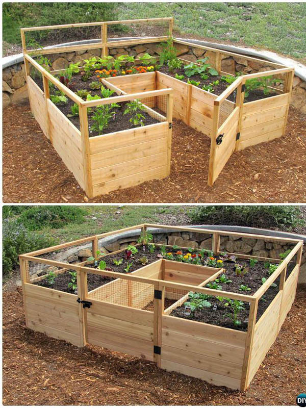 Diy healthy and organic vegetable container garden the for Organic vegetable garden design