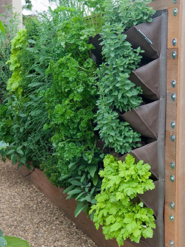 gardening-ideas-for-small-spaces