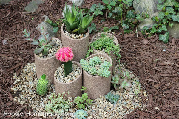 Indoor and outdoor succulent gardens that will make to say Can succulents grow outside