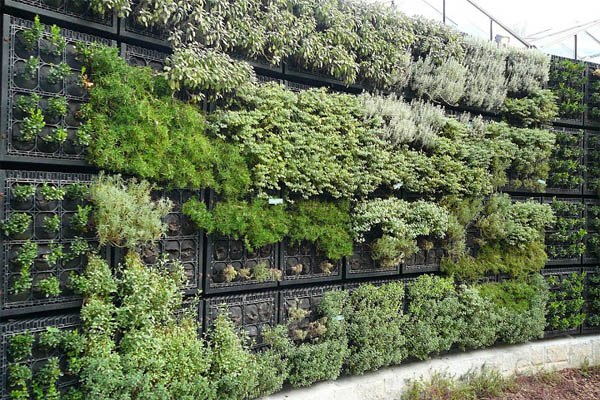 10 Gorgeous Vertical Gardening Beds To Grow Your Own