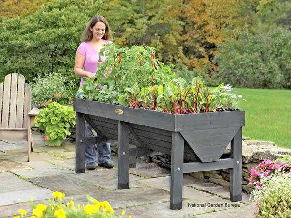 national_garden_bureau_container_veggies1_full_width