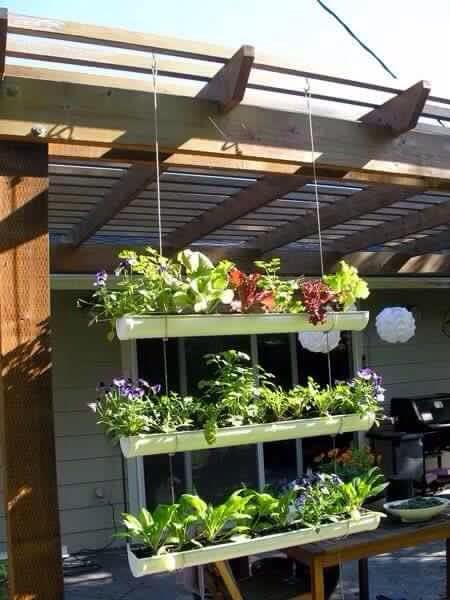 10 Helpful Design Tips For Vertical Gardens The Art In Life