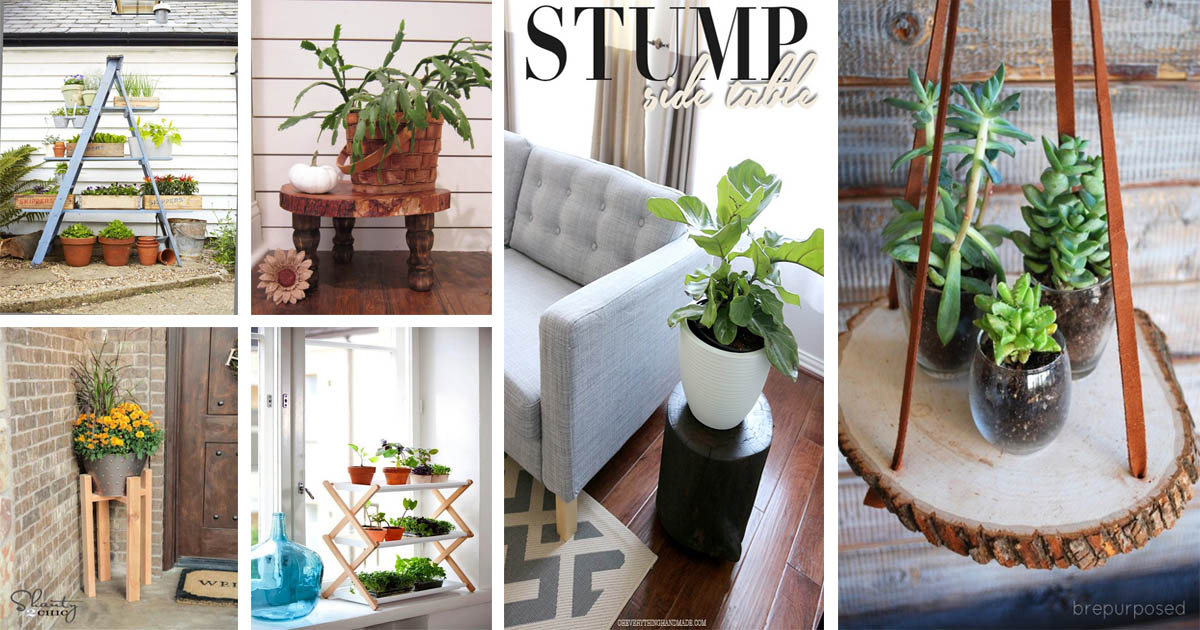 Beautiful And Most Creative Diy Plant Stand Ideas For Inspiration The Art In Life