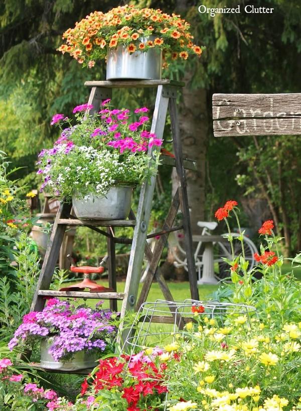 Vintage Garden
