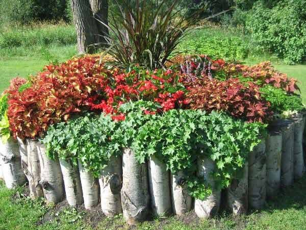 17 Fascinating Wooden Garden Edging Ideas You Must See - The ART in LIFE