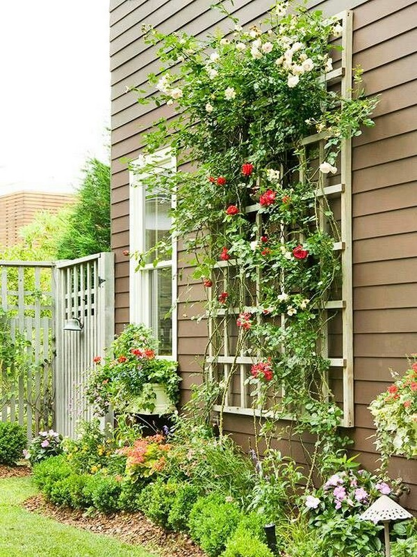 15 creative and easy diy trellis ideas for your garden. Black Bedroom Furniture Sets. Home Design Ideas