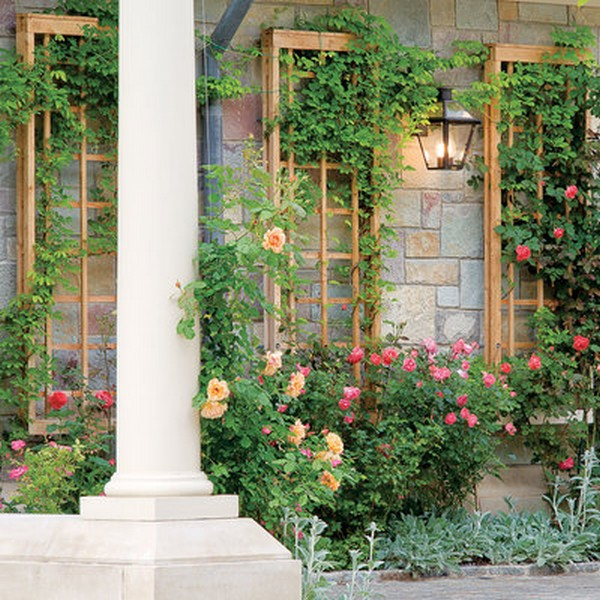 15 creative and easy diy trellis ideas for your garden the art in life elegant wall attached trellis panel solutioingenieria Images