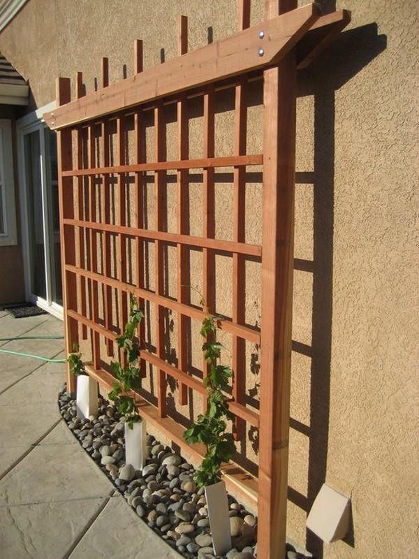 15 creative and easy diy trellis ideas for your garden for Wire garden trellis designs