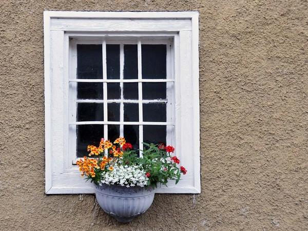long life flower box