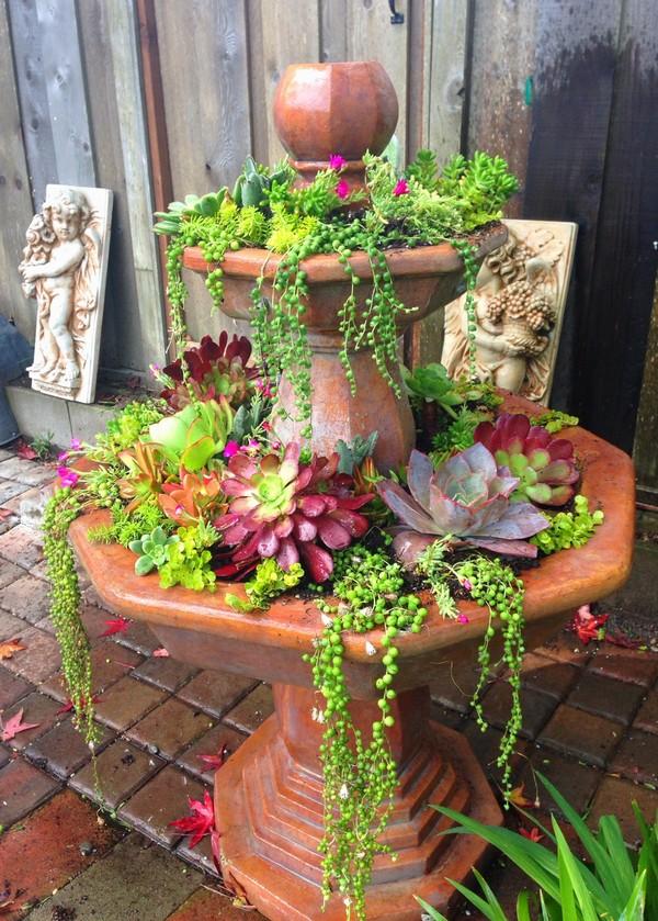 wonderful ways to use water in the garden