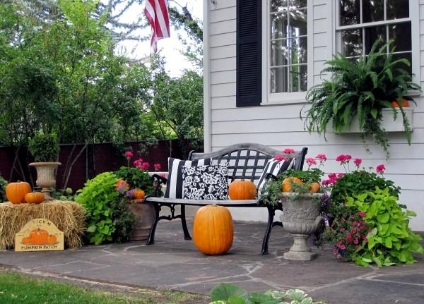 Outdoor Autumn
