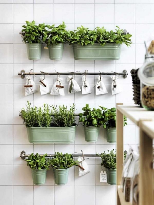 DIY Small Space Kitchen Herb Garden
