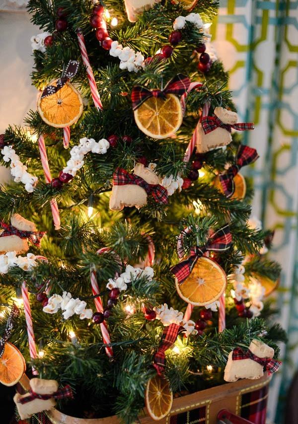 Orange Fruit Kitchen Decor