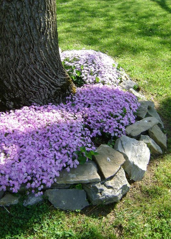 18 Genius Flower Beds Around Trees You Need To See The Art